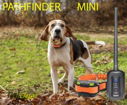 Dogtra Pathfinder mini GPS dla psa zasięg do 6 km
